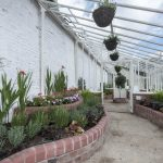 Chorley Council .New walled garden greenhouse Astley Park