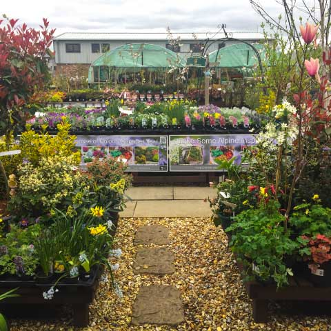 Chorley-Flower-Show---Avant-Home-and-Garden-Centre