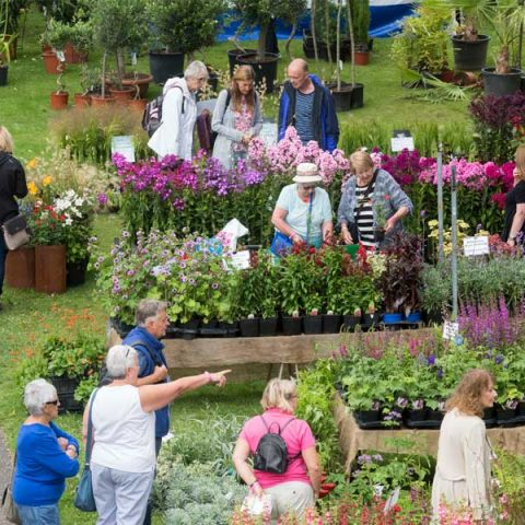 Chorley Flower Show - Crowd-600x732