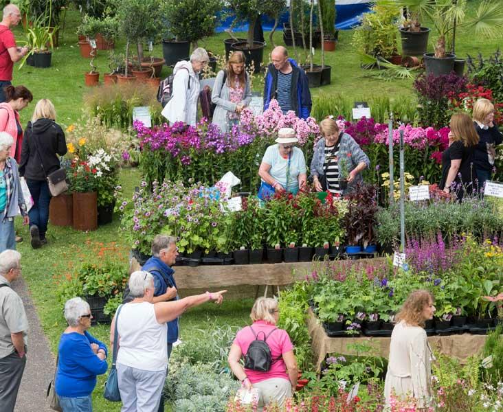 Chorley Flower Show - Crowd-600x732