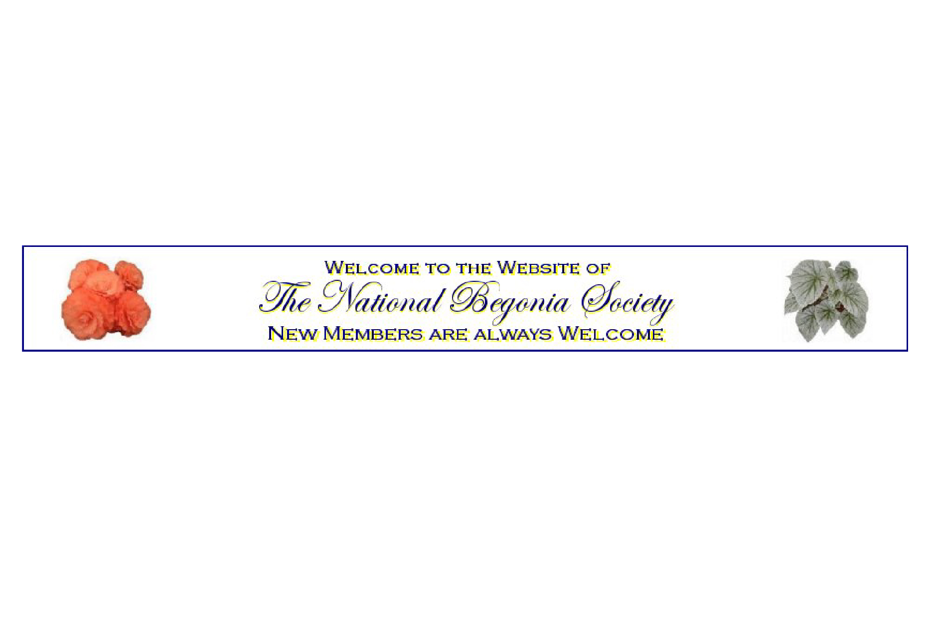 The National Begonia Society